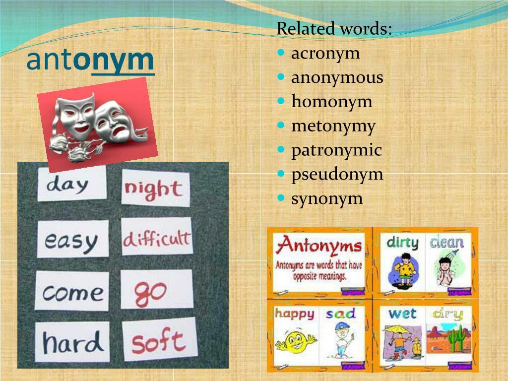 PPT - Greek Vocabulary 5 PowerPoint Presentation - ID:2393527