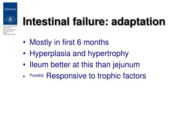 Intestinal failure: adaptation