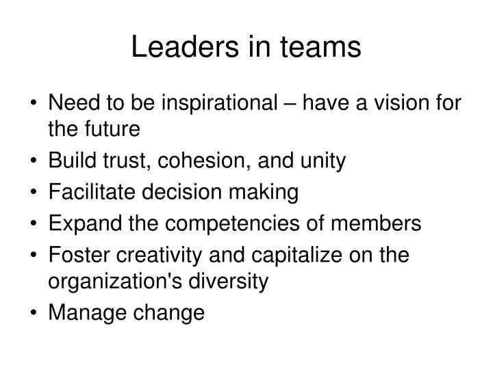 Leaders in teams