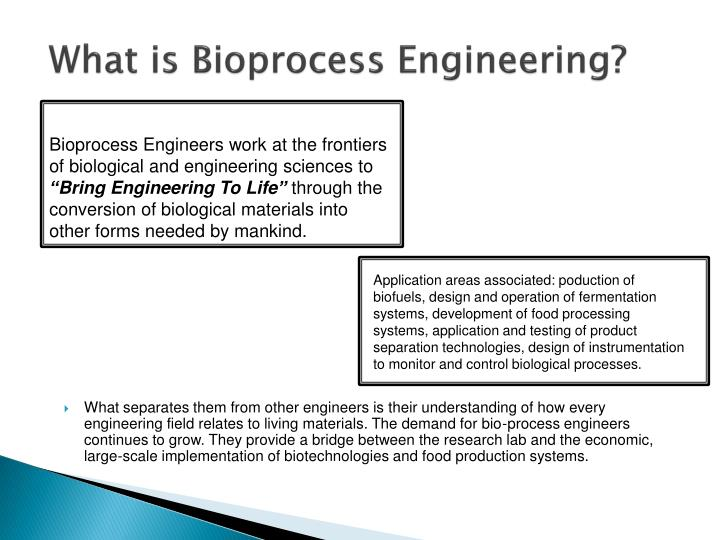 What is bioprocess engineering