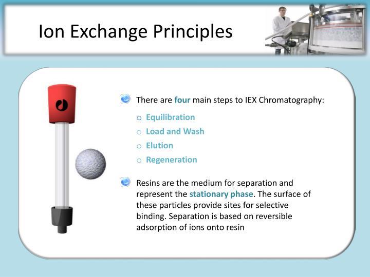 Ion exchange principles