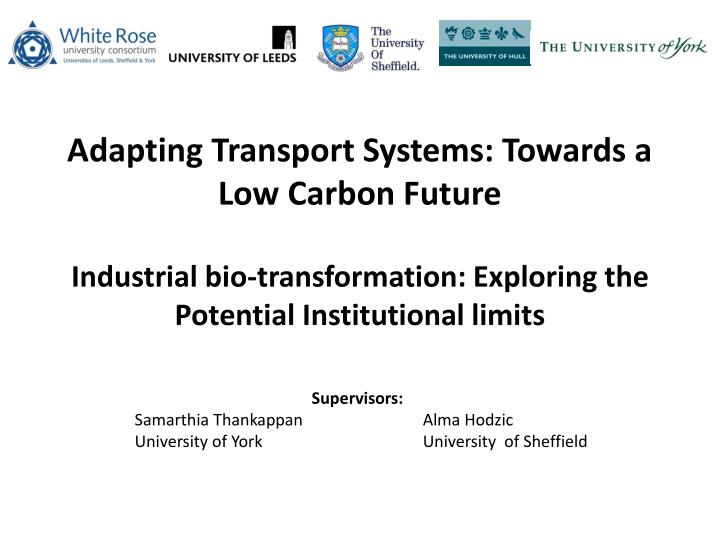 adapting transport systems towards a low carbon future n.