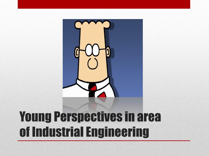 Young Perspectives in area of Industrial Engineering