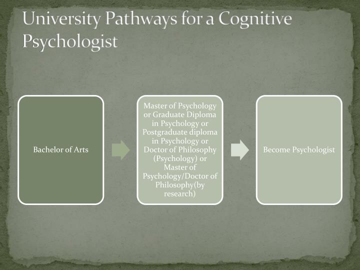 University Pathways for a Cognitive Psychologist