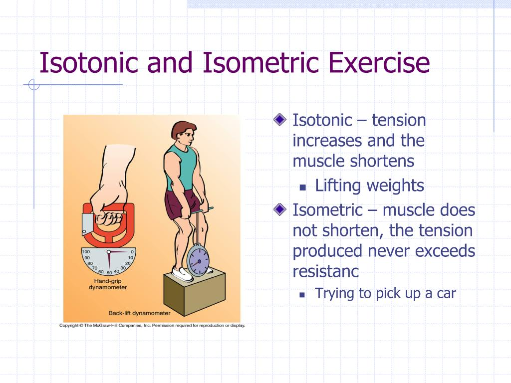PPT - Muscle Physiology: The Actions of the Sarcomere