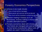 forestry economics perspectives