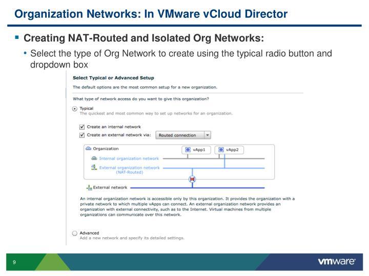Organization Networks: In VMware vCloud Director