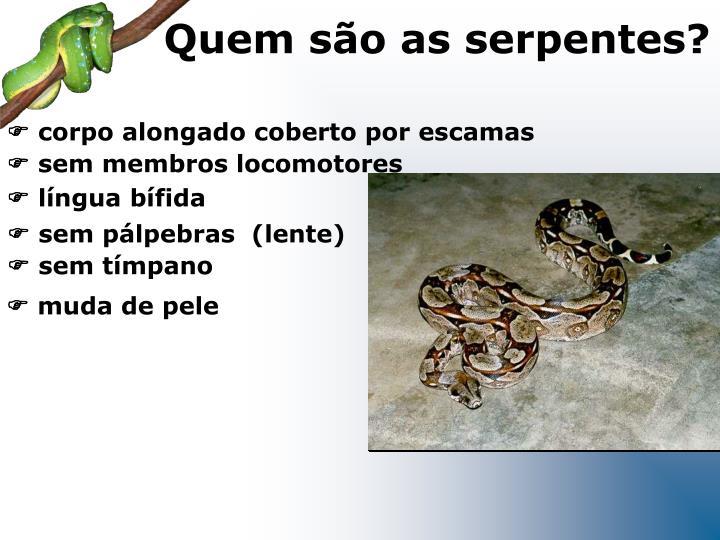 Quem são as serpentes?