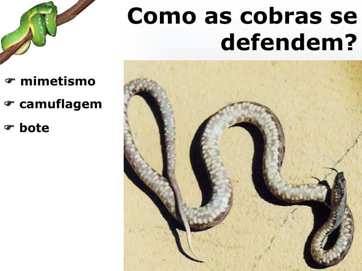 Como as cobras se defendem?