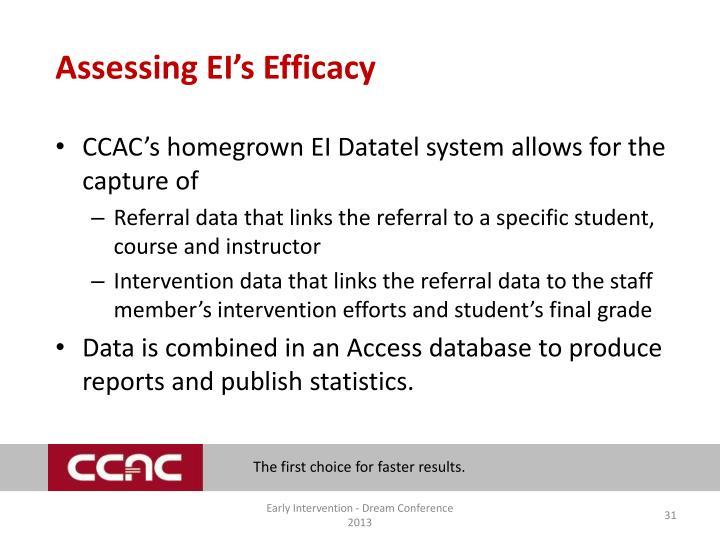 Assessing EI's Efficacy