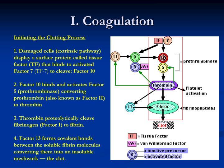 I coagulation