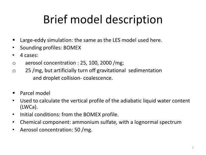 Brief model description