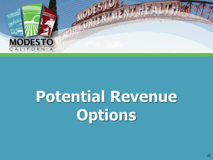 Potential Revenue Options