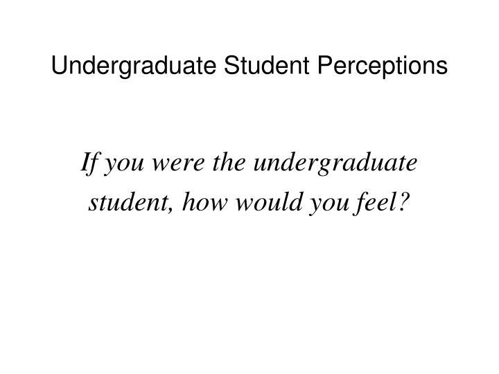 Undergraduate Student Perceptions