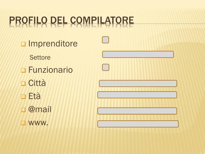 Profilo del compilatore