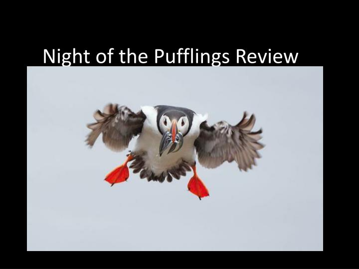 Night Of The Pufflings Story