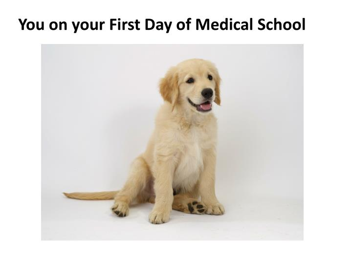 You on your First Day of Medical School