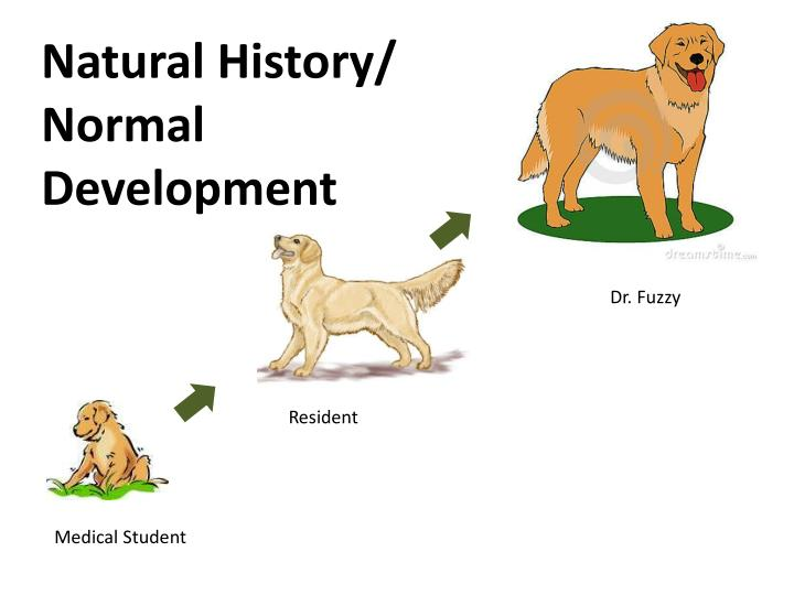 Natural History/ Normal Development