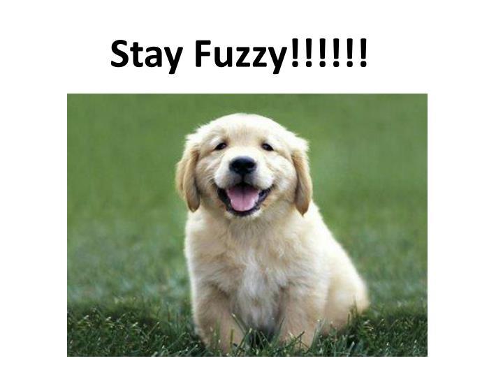 Stay Fuzzy!!!!!!