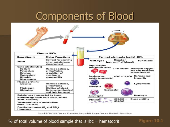 Components of Blood
