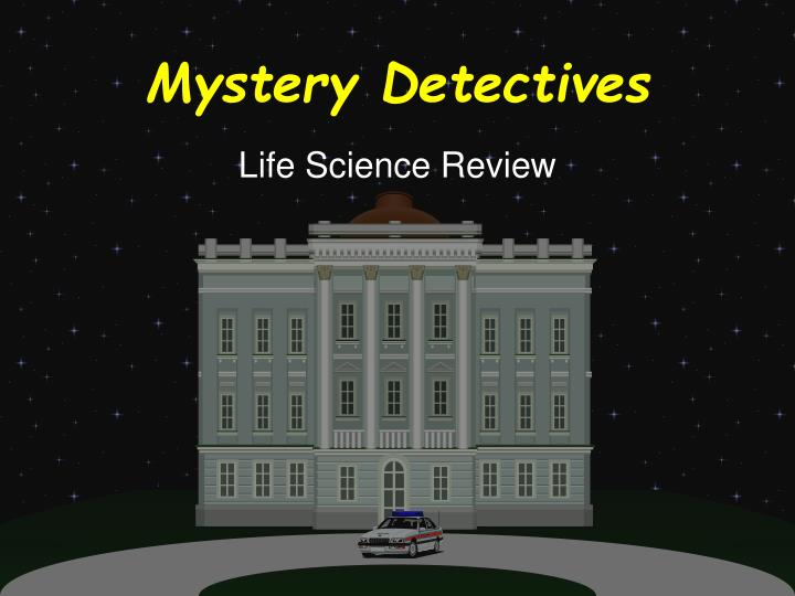 mystery detectives n.