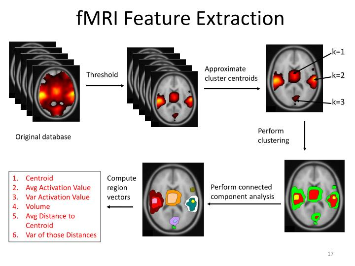 fMRI Feature Extraction