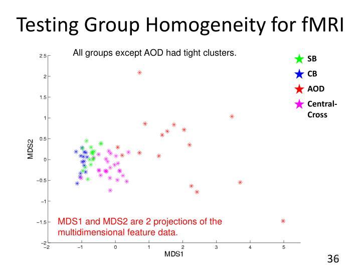 Testing Group Homogeneity for fMRI