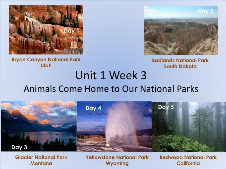 unit 1 week 3 animals come home to our national parks n.