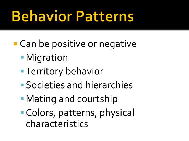 Behavior Patterns