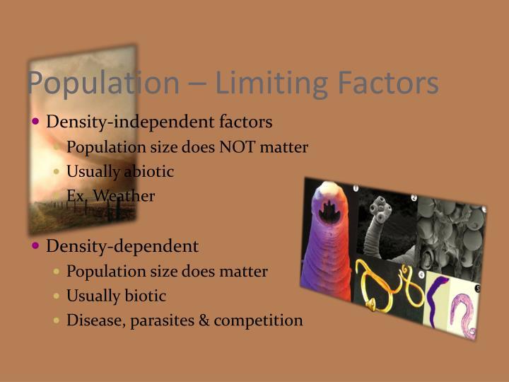 Population – Limiting Factors