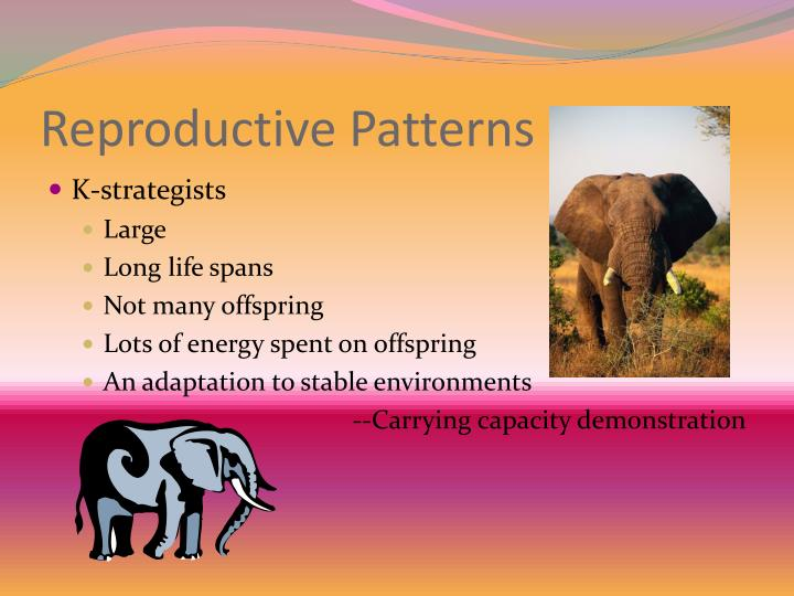 Reproductive Patterns