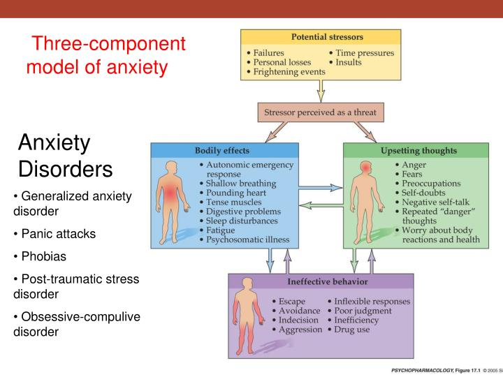 three component model of anxiety n.