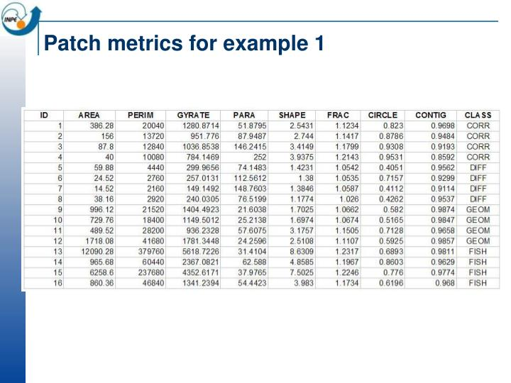 Patch metrics for example 1