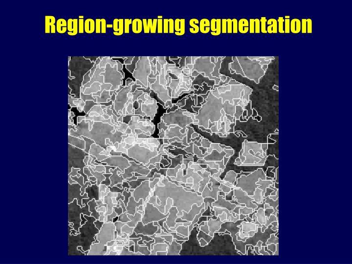 Region-growing segmentation