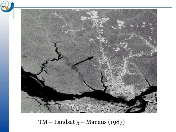 TM – Landsat 5 – Manaus (1987)