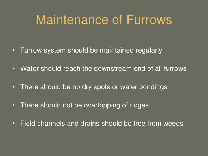 Maintenance of Furrows