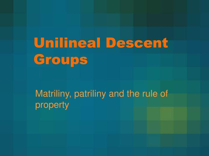 unilineal descent groups n.