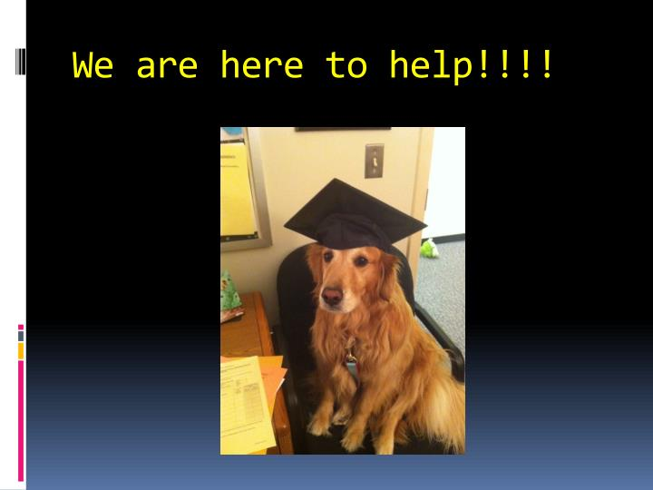 We are here to help!!!!