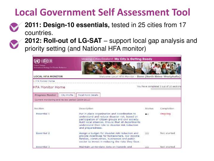Local Government Self Assessment Tool