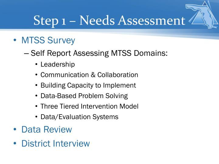Step 1 – Needs Assessment