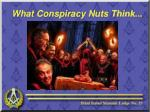 what conspiracy nuts think