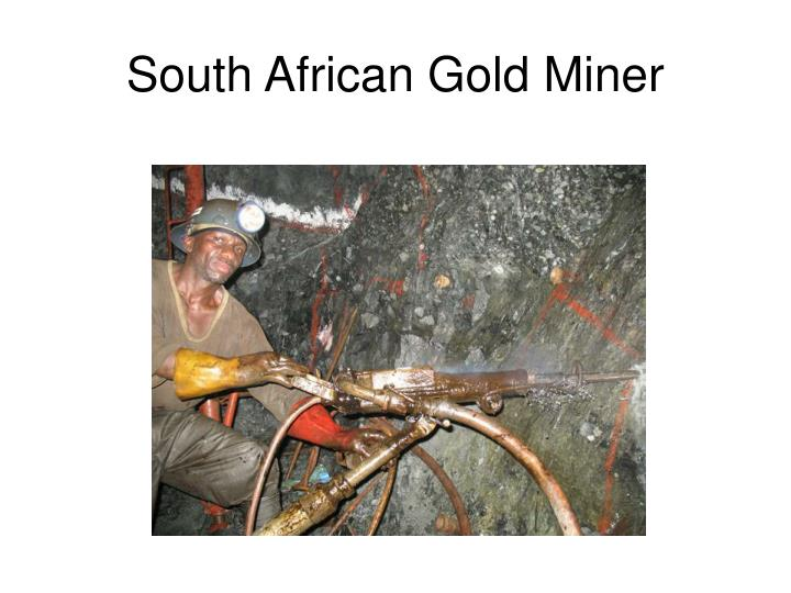 South African Gold Miner