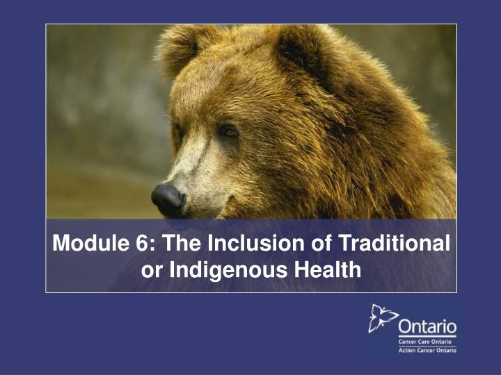 module 6 the inclusion of traditional or indigenous health n.
