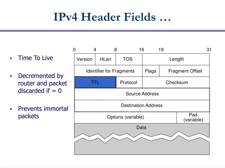 IPv4 Header Fields …