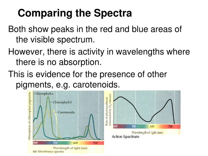 Comparing the Spectra