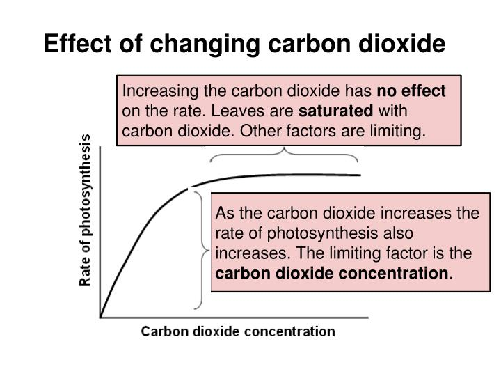 Effect of changing carbon dioxide