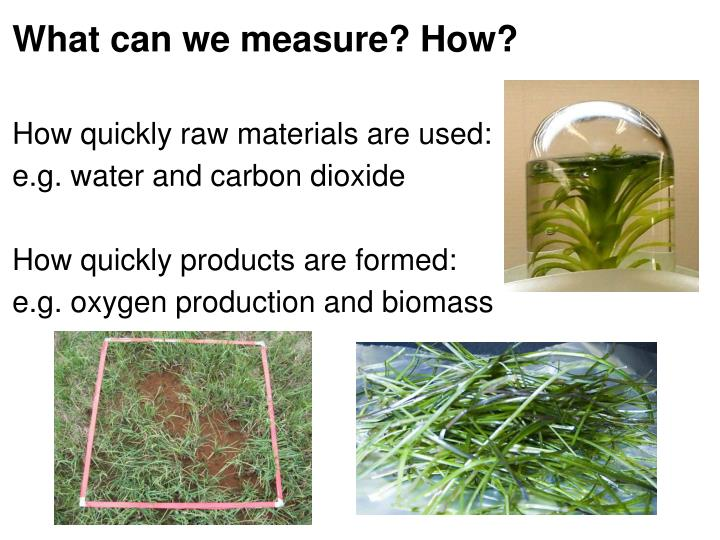 What can we measure? How?