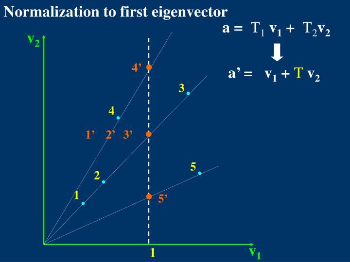 Normalization to first eigenvector