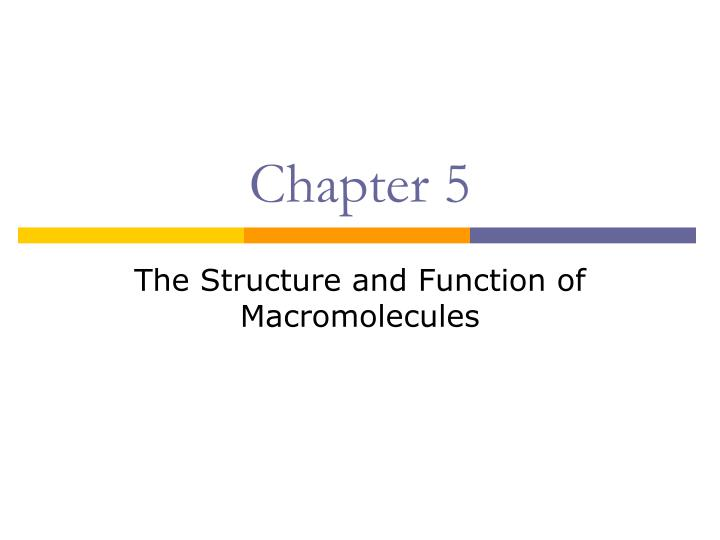 structure and function of macromolecules within The structure of the molecule can therefore be deduced from the pattern of scattered x rays (the diffraction pattern) in 1958 john kendrew was the first to determine the three-dimensional structure of a protein, myoglobin—a relatively simple protein of 153 amino acids ( figure 218 .