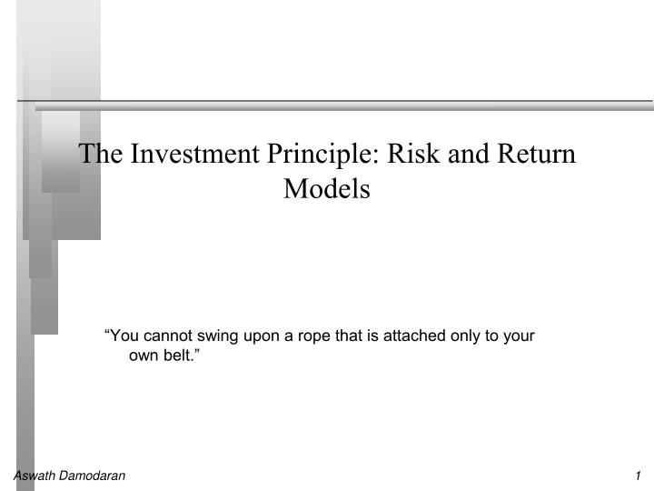 the investment principle risk and return models n.